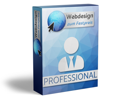 Webseite Professional Paket